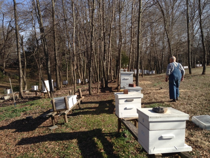 St. Dominic's Bee Farm in Mayodan, NC